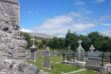 6 Day Tour in The Burren from Limerick