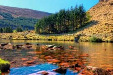Dingle Peninsula Tour from Limerick