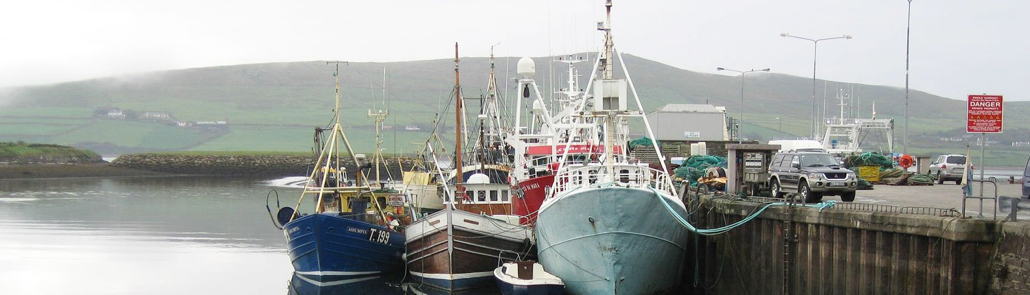 Dingle Harbour Kerry
