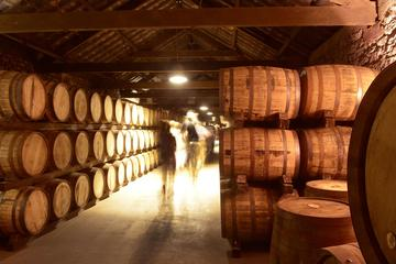 Jameson Experience in County Cork