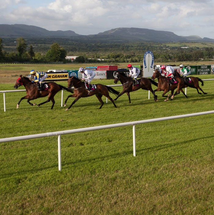 sligo-races