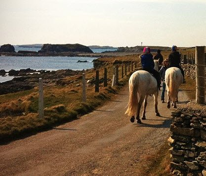 Inishbofin-Equestrian-Centre