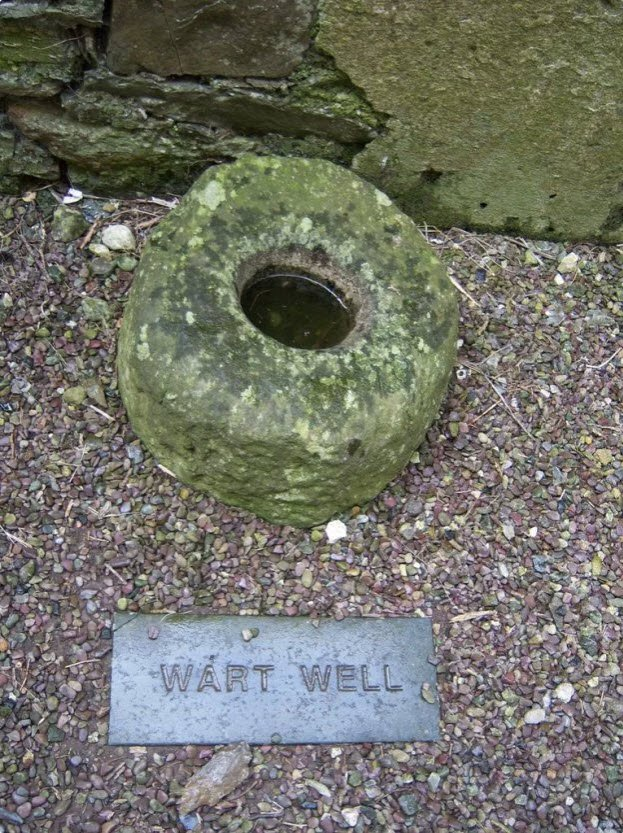 Timoleague Abbey Wart Well